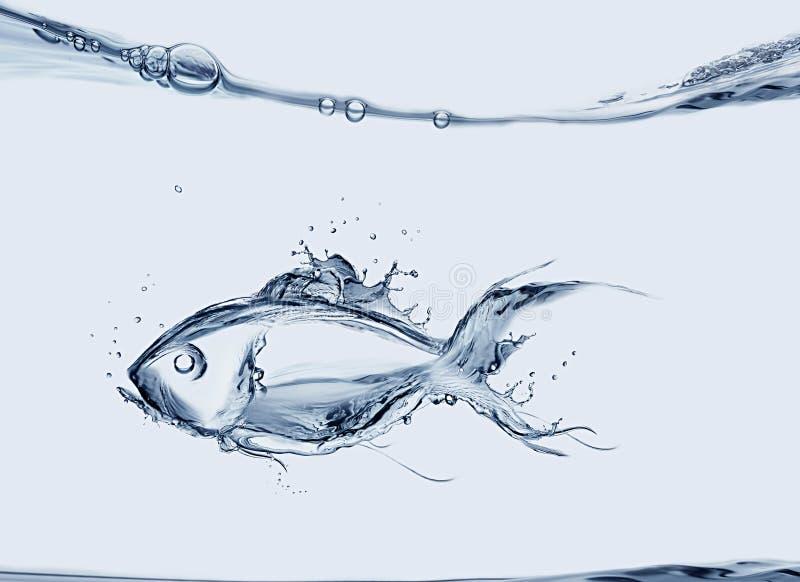 De Vissen van het water royalty-vrije stock afbeeldingen