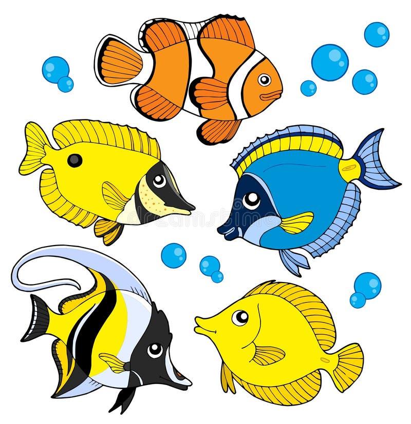 De visseninzameling van het koraal vector illustratie