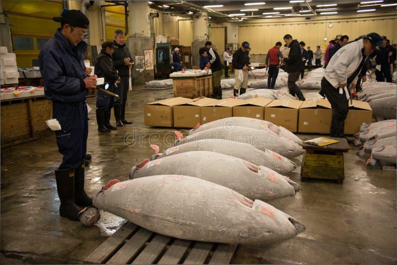 De vissenmarkt van Tsukiji, Japan stock afbeelding
