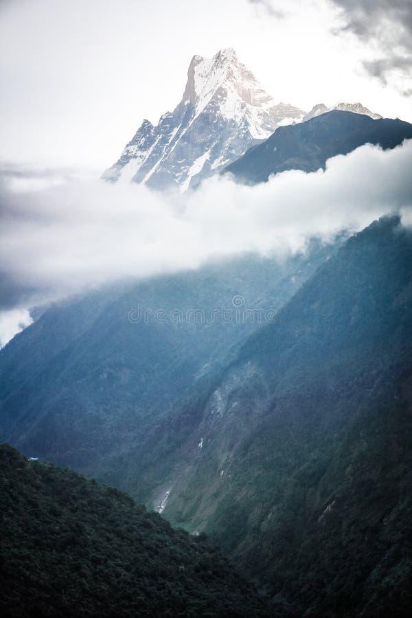 De Vissenstaart van de Machapuchareberg, Pokhara-vallei, Nepal stock foto