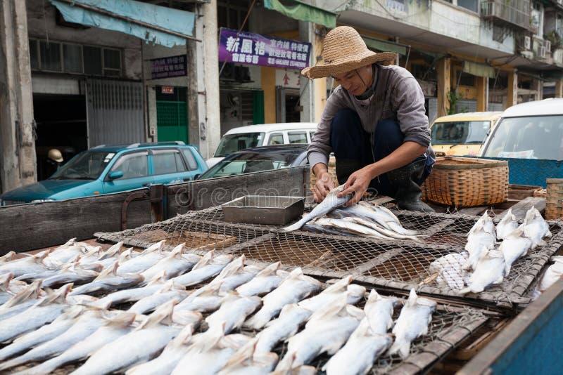 De visser bereidt vissen voor het drogen in de vissershaven in Macao voor stock fotografie