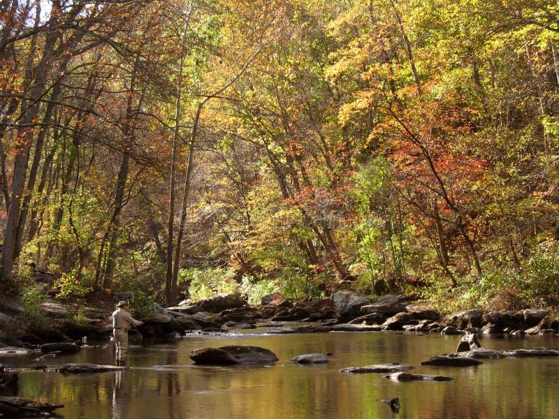 De Visserij van de Vlieg van de herfst stock foto