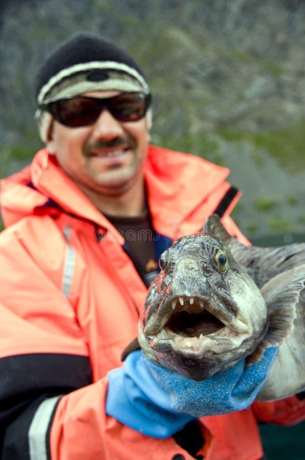 De visserij van Noorwegen stock foto's