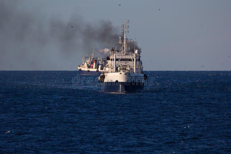 De visserij van schepen in de oceaan royalty-vrije stock afbeeldingen
