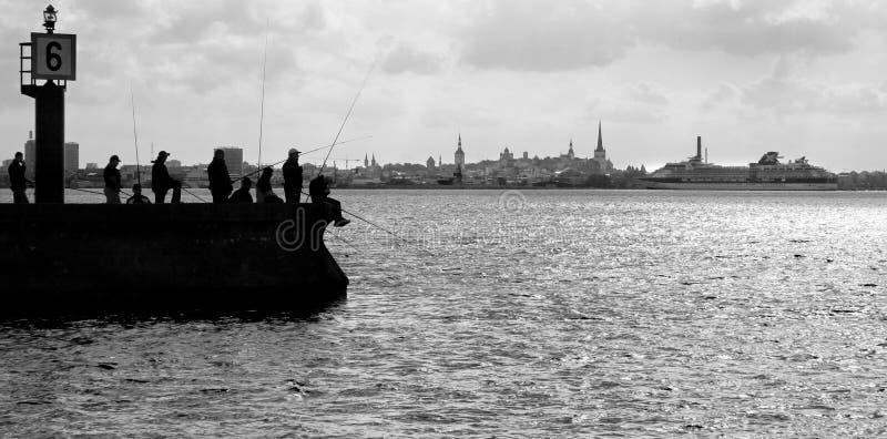 De vissers die van de silhouetfoto in backlight op de mol op de achtergrond van Tallinn vissen Een grote veerboot benadert de sta stock afbeelding