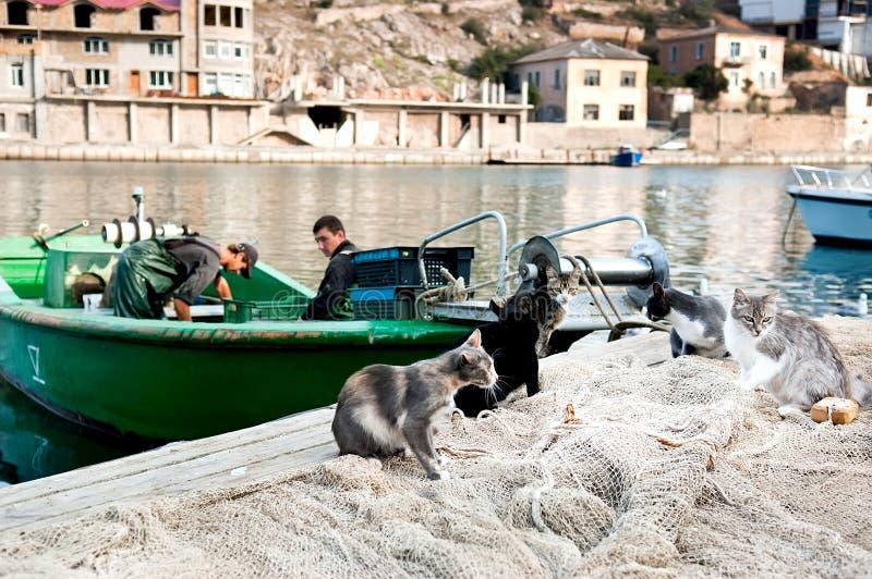 De vissers werken aan de boot royalty-vrije stock afbeelding
