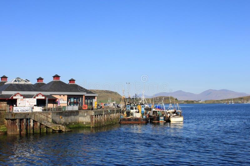 De vissersboten, Oban-Baai, Kerrera, bergen overwegen stock foto's