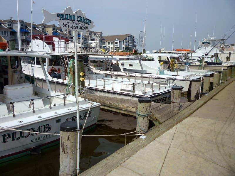 De Vissersboten van de charter stock fotografie