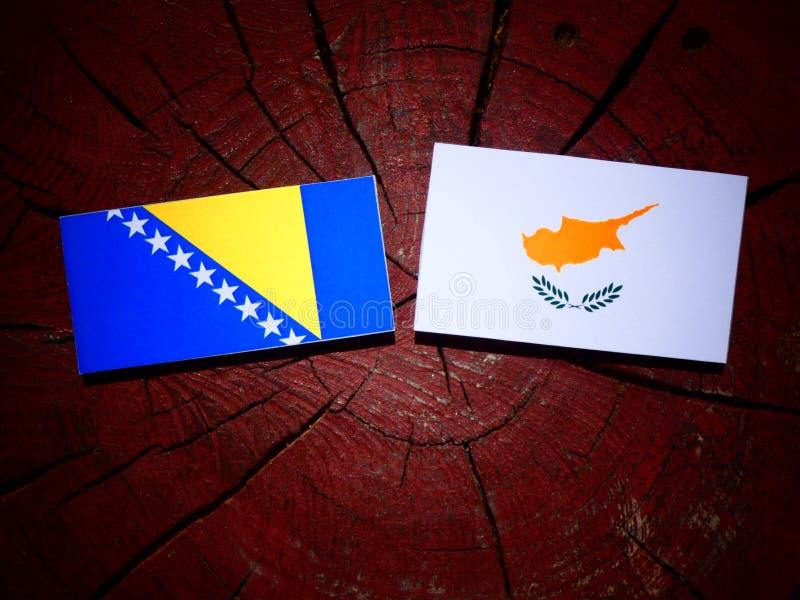 De vlag van Bosnië-Herzegovina met Cypriotische vlag op een boomstomp is stock foto
