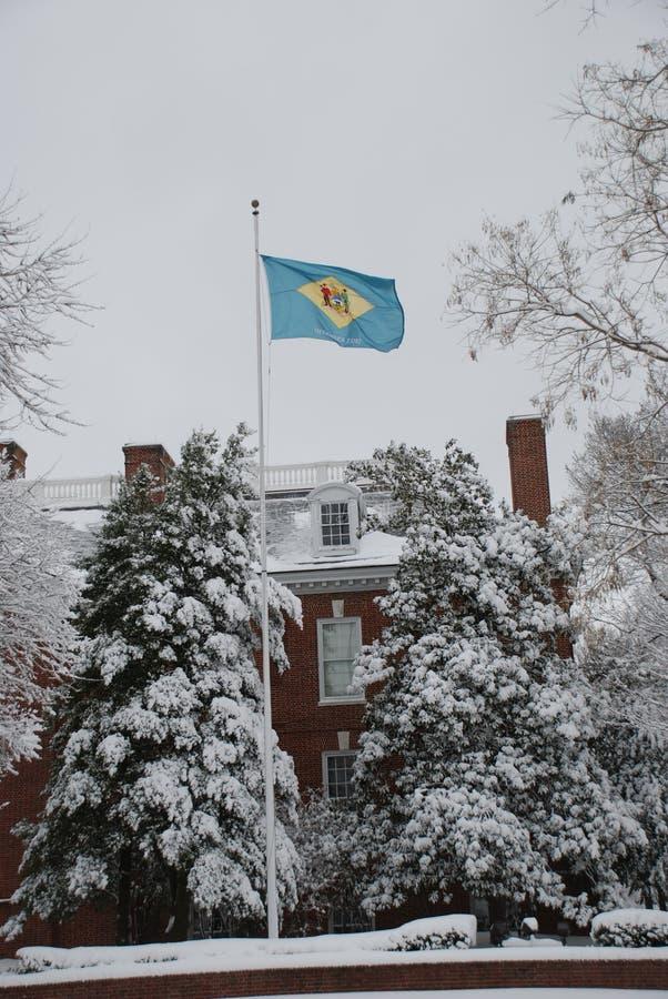 De Vlag van de Staat van Delaware in de sneeuw royalty-vrije stock foto's