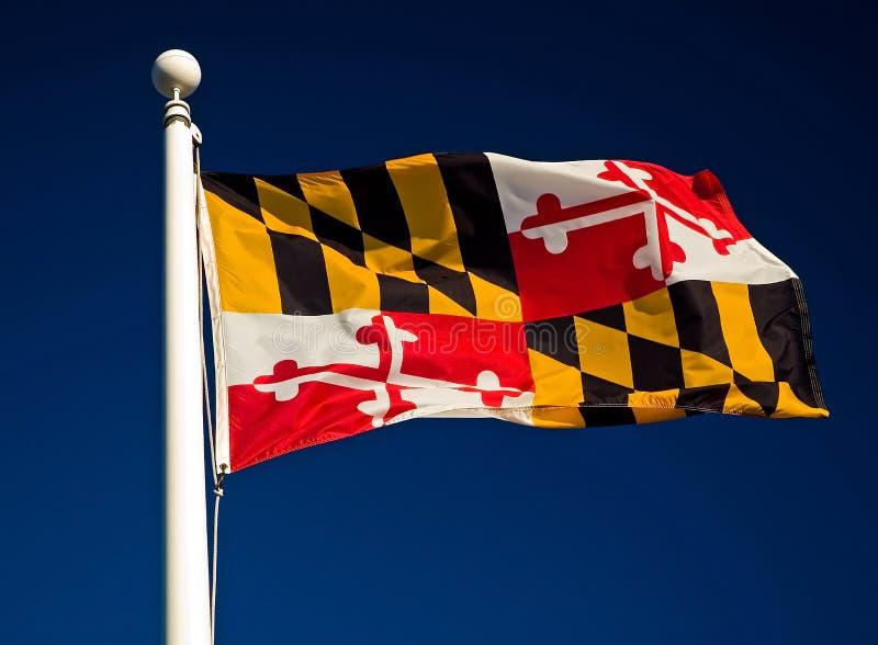 De Vlag van de Staat van Maryland stock foto