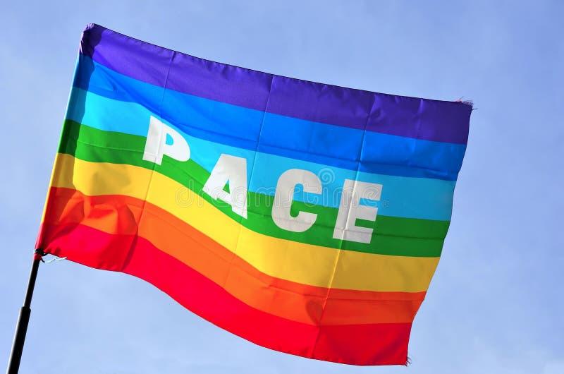 De vlag van de vrede stock fotografie