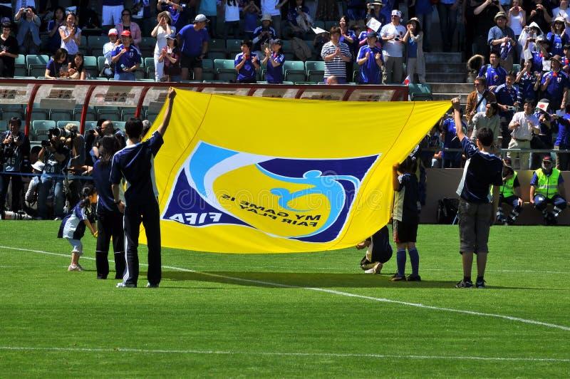 De vlag van FIFA 2010 royalty-vrije stock afbeelding
