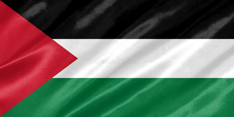 De vlag van Palestina royalty-vrije illustratie