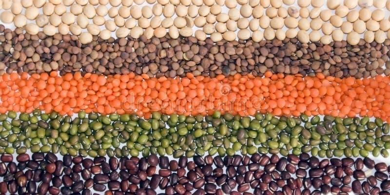 De vlag van peulvruchten stock fotografie