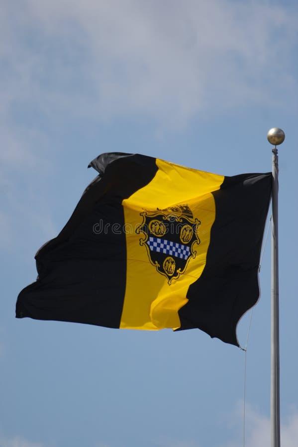 De Vlag van Pittsburgh royalty-vrije stock afbeelding