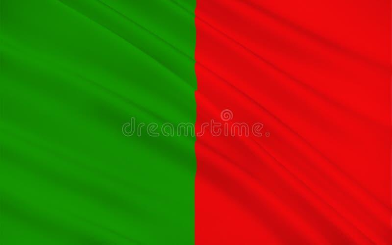 De vlag van Provincie Mayo is een provincie in Ierland stock illustratie