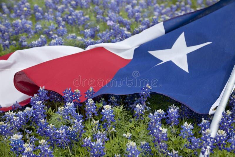 De vlag van Texas onder bluebonnetbloemen op heldere de lentedag stock foto's