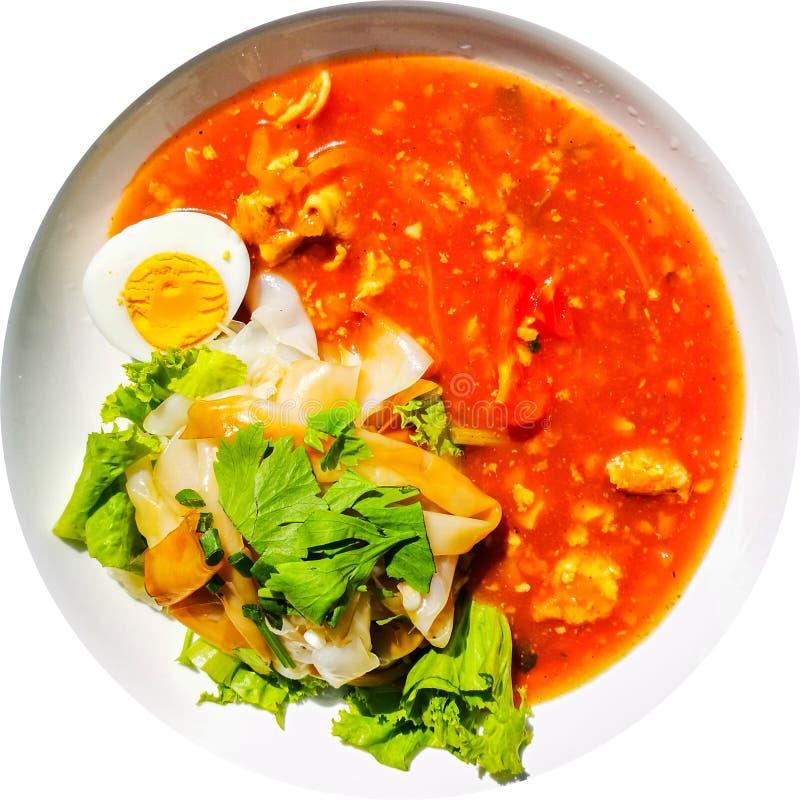 De vlakke Dikke noedels met kip en gekookt ei dienden met de saus van de tomatenjus in ronde die plaat op witte achtergrond wordt stock afbeeldingen