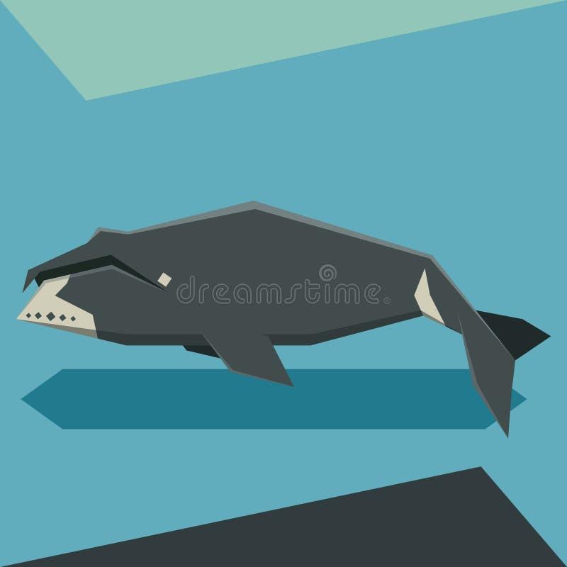 De vlakke walvis van ontwerpbowhead vector illustratie