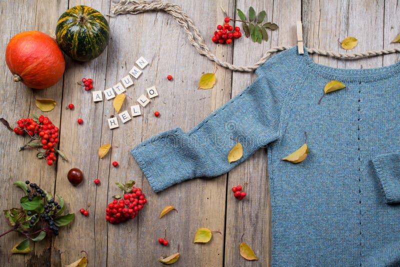 De vlakte van de de herfstdaling legt, hoogste mening Warme gebreide sweater, Dalingsbladeren, kastanjes, lijsterbessenbes en pom stock afbeeldingen