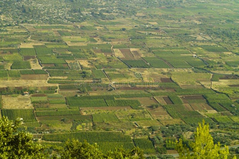 De vlakte van oude Starigrad in eiland Hvar stock foto's