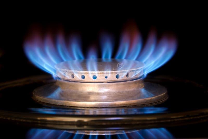 De Vlam van het gasfornuis stock fotografie