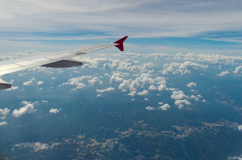 De vleugel van vliegtuig stock foto