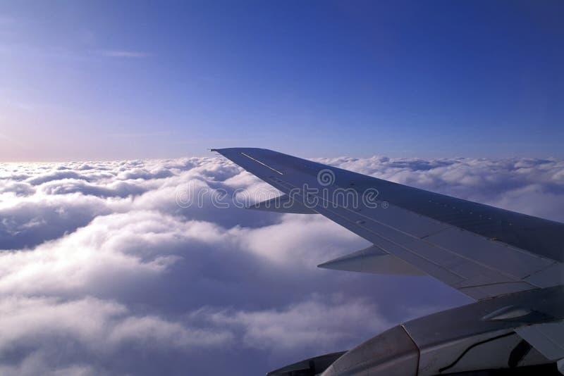 De vleugel van vliegtuigen stock afbeelding