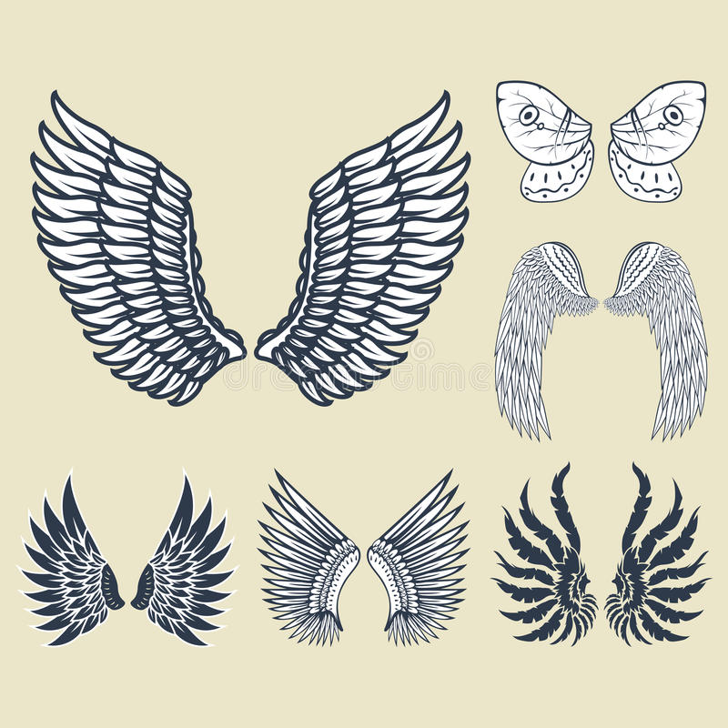 De vleugels isoleerden dierlijke van de de vogelvrijheid van de veerpignon van de de vlucht natuurlijke vrede het ontwerp vectori vector illustratie