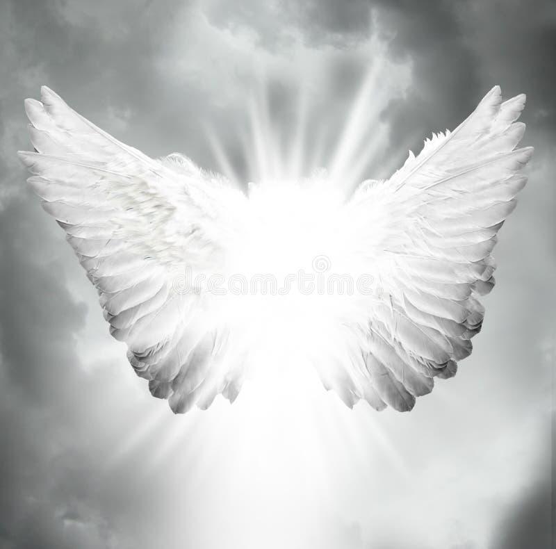 De vleugels van de engel royalty-vrije stock foto