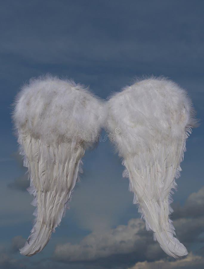 de vleugels van de Kerstmisvakantie stock foto