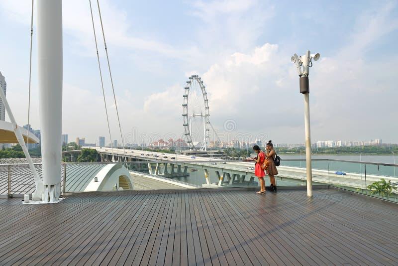 De Vlieger van Singapore in de dag stock foto