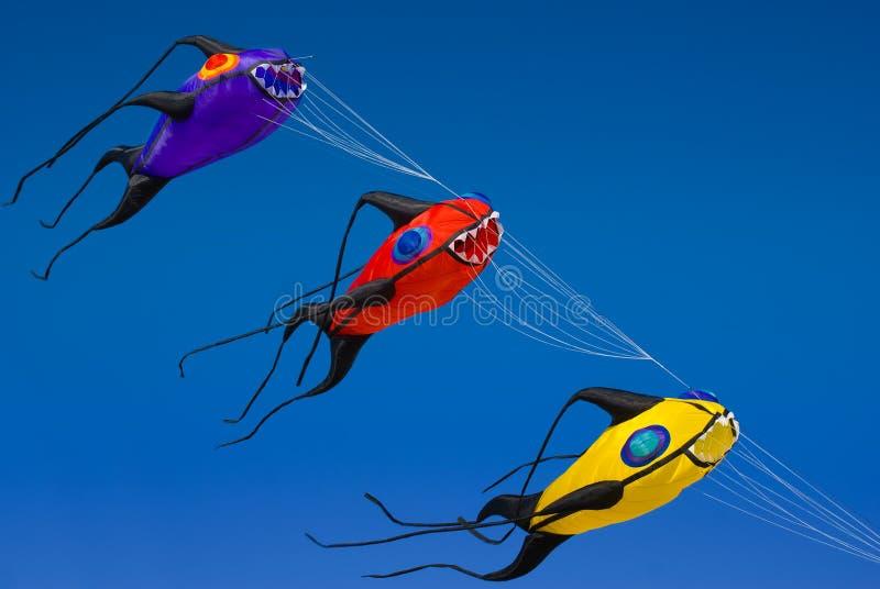 De Vliegers van vissen stock foto's