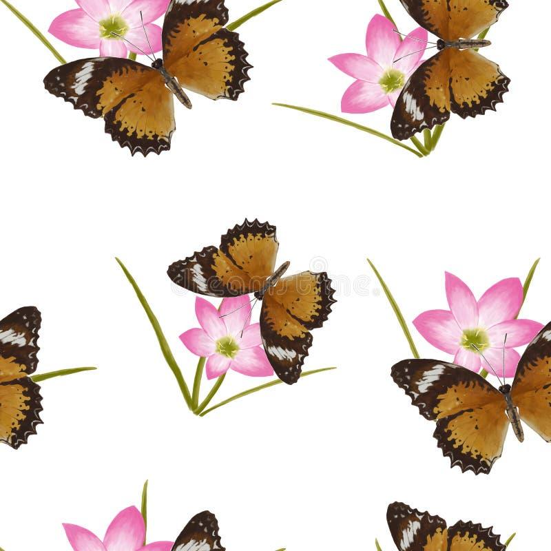 De vlinder bloeit naadloos patroon op witte achtergrond vector illustratie
