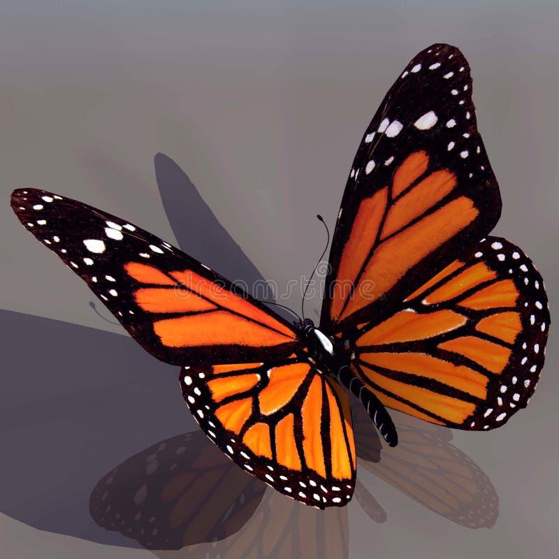 De Vlinder van de monarch stock illustratie