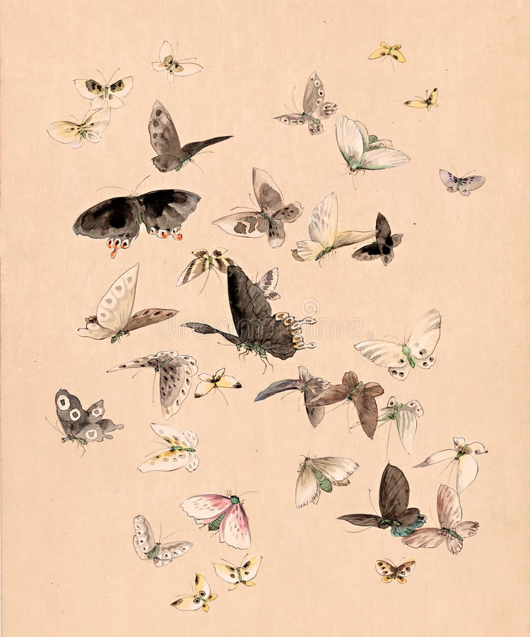 De vlinders en de motten van de waterverf royalty-vrije illustratie