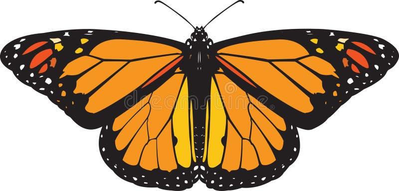De vlindervector van de monarch vector illustratie