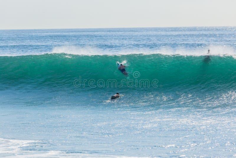 De Vluchtduw van surferssurfplanken onder Oceaangolf stock foto