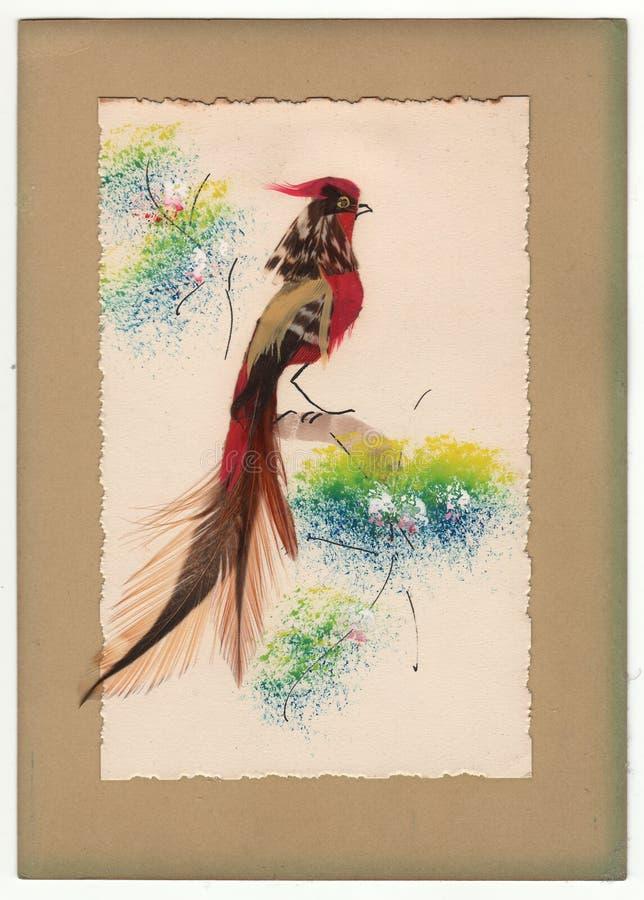 De Vntage Bevederde Kaart van de Vogelgroet 1910& x27; s stock fotografie