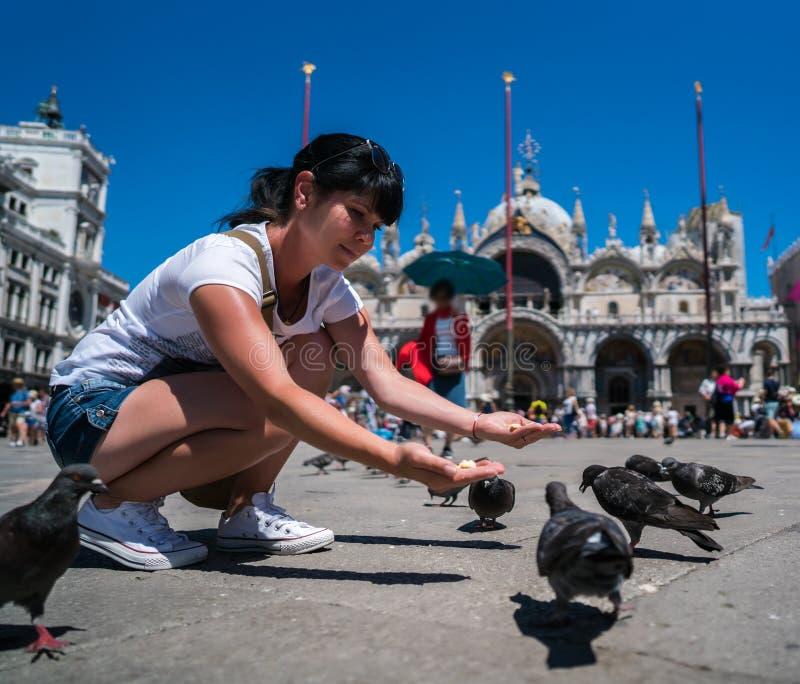 De voedende duiven van de vrouwentoerist in het vierkant - St Tekensvierkant - royalty-vrije stock foto
