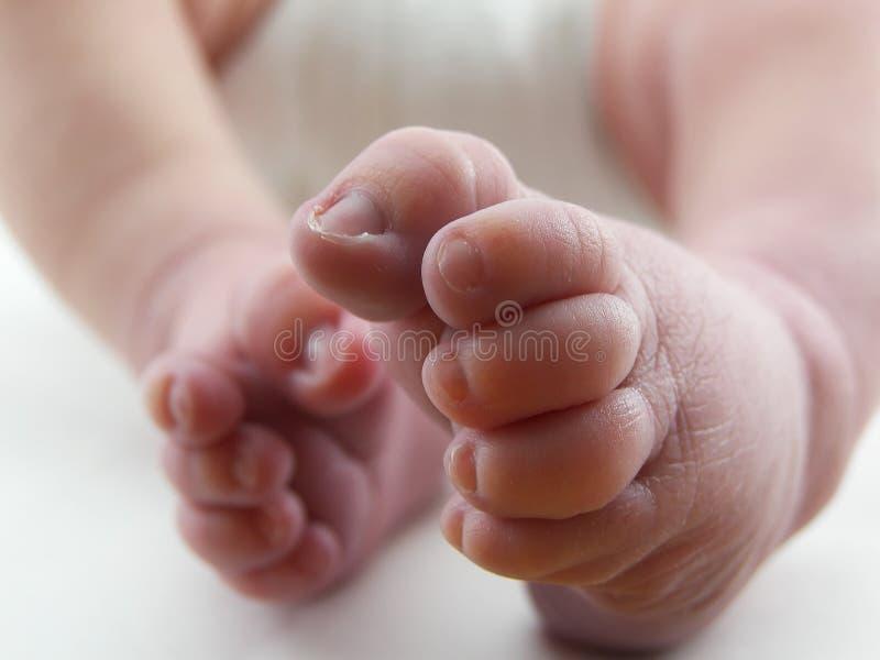 De Voet van de baby stock foto