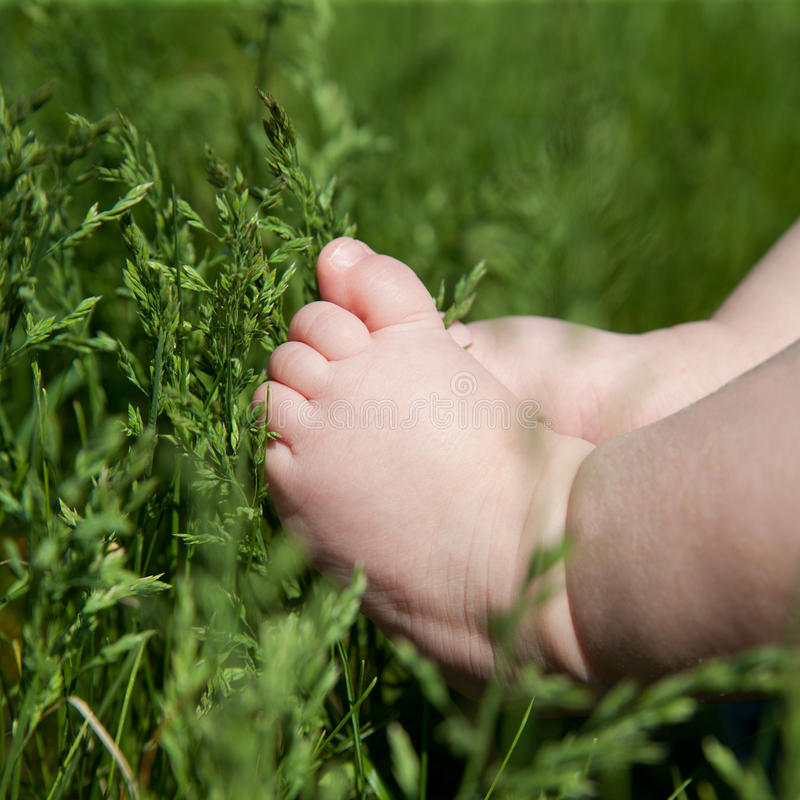 De voet van de baby op groen gras royalty-vrije stock foto