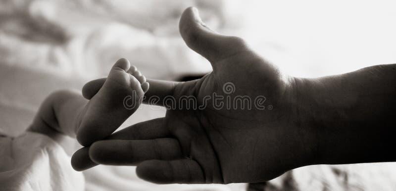 De voet van het kind in de hand van de vader stock afbeelding