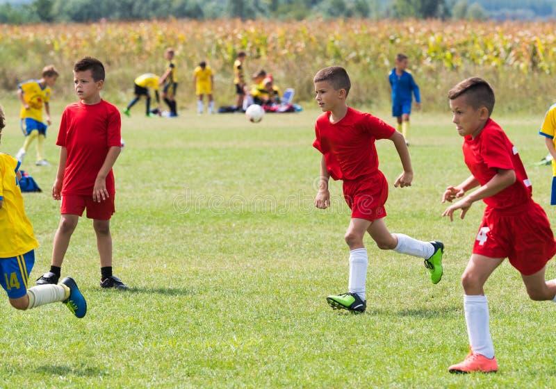 De voetbal van het jonge geitjesvoetbal - de gelijke van kinderenspelers op voetbalgebied stock fotografie