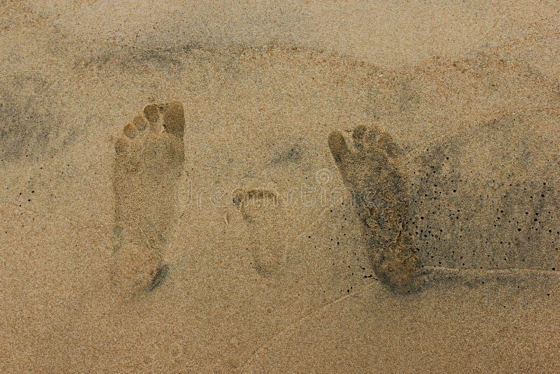 De voetdrukken van de close-upfamilie op zandig strand stock foto's