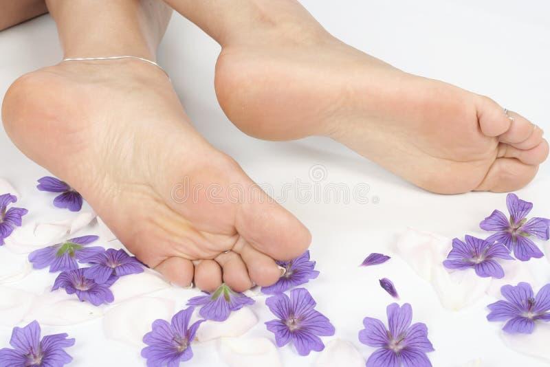 De voeten en de benen van de vrouw over wit royalty-vrije stock foto's
