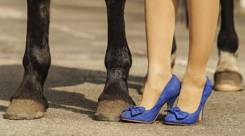 De voeten van de paardhoef dichtbij de voeten vrouwenschoenen royalty-vrije stock afbeelding