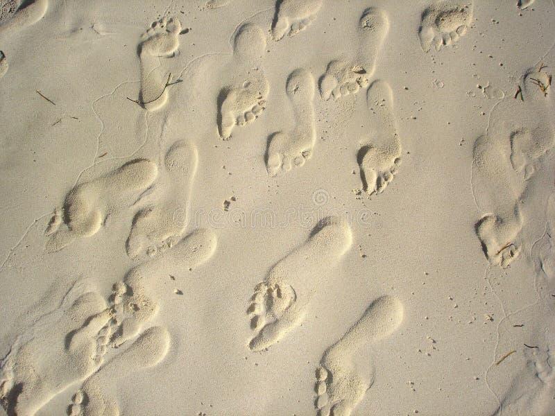 De voeten van het zand stock afbeelding