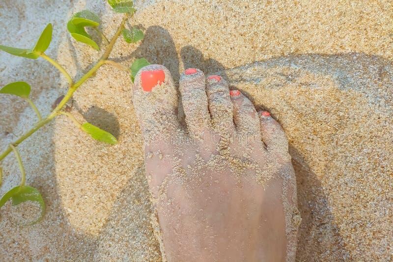 De voeten van de vrouw op het zandige strand met koraal rode manikure, close-up van vingerspijkers stock foto